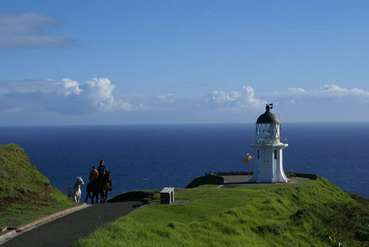 The lighthouse at Cape Reinga marks the beginning of our trek