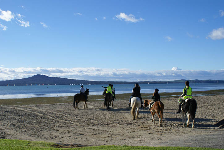 Meadowbank Pony Club joins us for the ride along Auckland's waterfront
